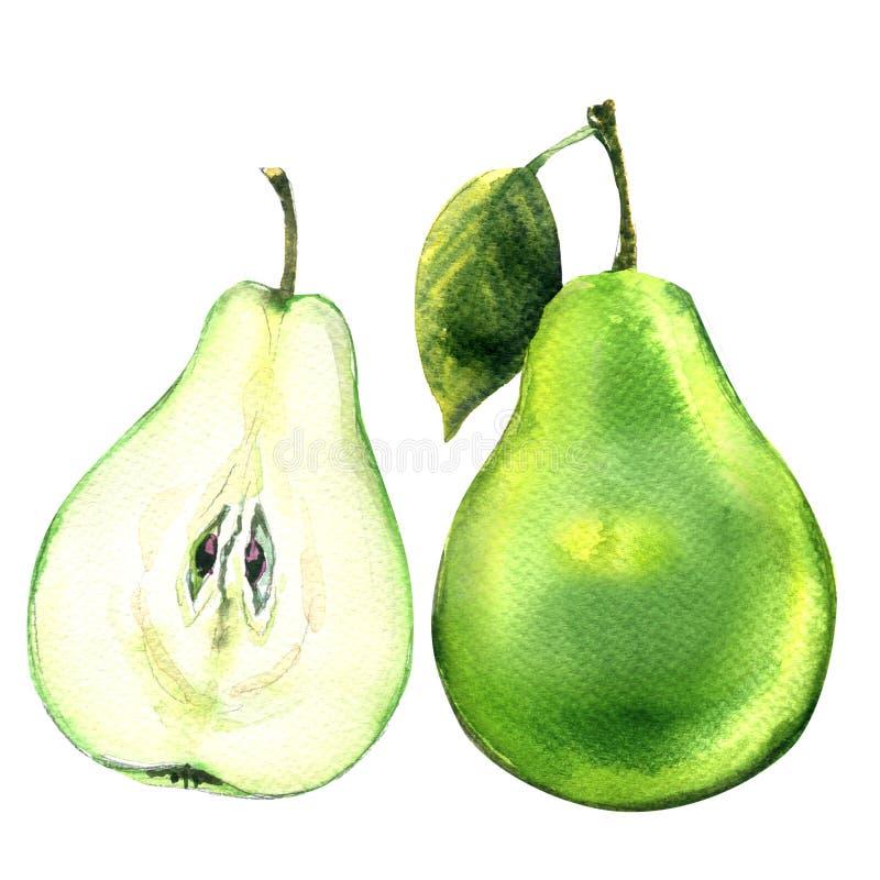 Pera a medias verde entera y cortada fresca aislada en blanco ilustración del vector