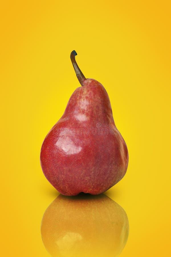 Pera rossa fotografia stock libera da diritti