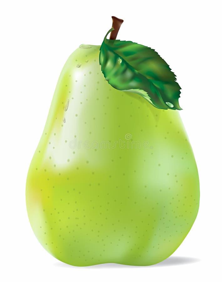 Pera verde di vettore con le gocce su bianco royalty illustrazione gratis