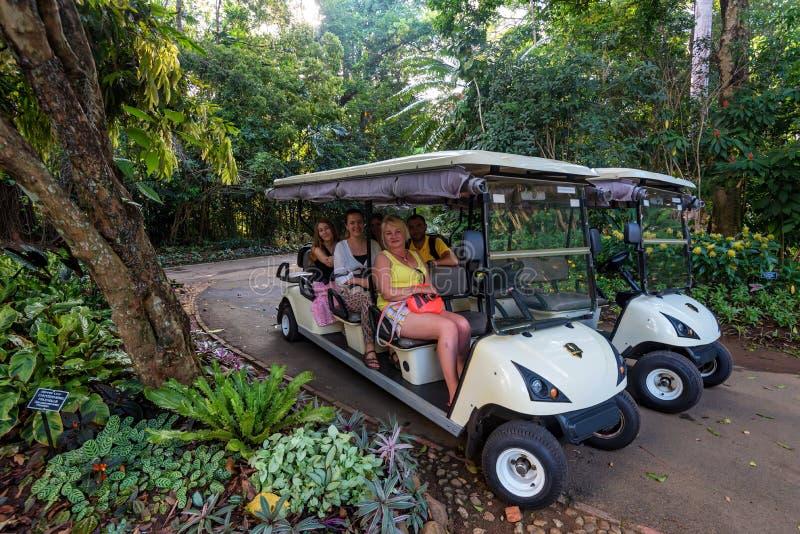 PERADENIA, SRI LANKA - CIRCA DICEMBRE 2016: Turisti in giardino botanico reale immagine stock