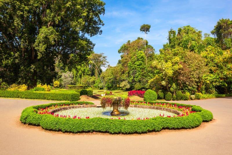 Peradeniya皇家植物园 免版税库存照片