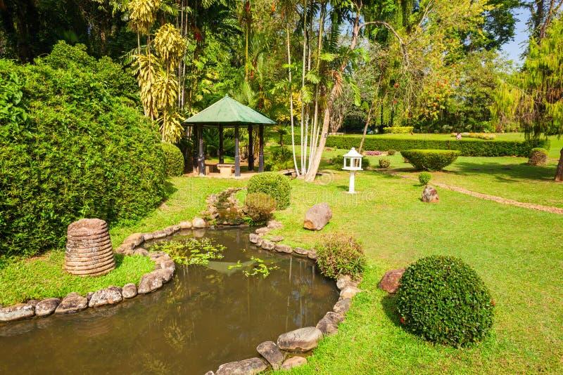 Peradeniya皇家植物园 免版税图库摄影