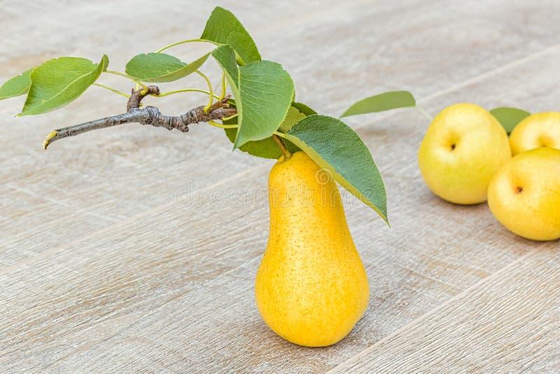 Download Peras Amarelas Maduras No Fundo De Madeira Cinzento, Close-up Foto de Stock - Imagem de produto, nave: 80100276