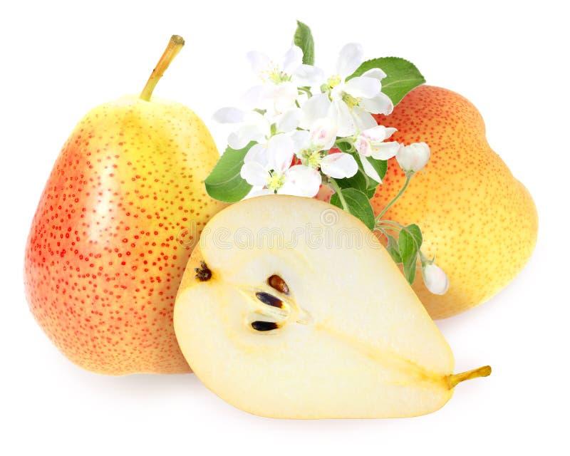 Peras amarelo-alaranjadas frescas com folha verde imagem de stock