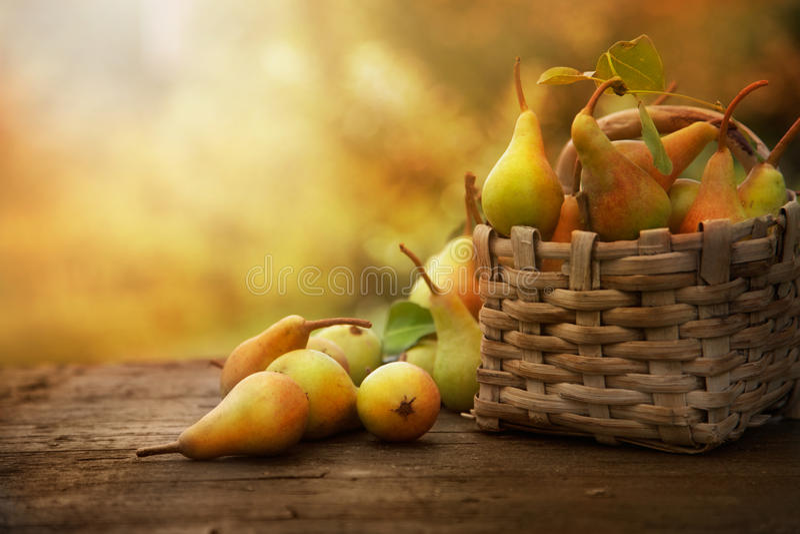 Peras do outono imagens de stock royalty free