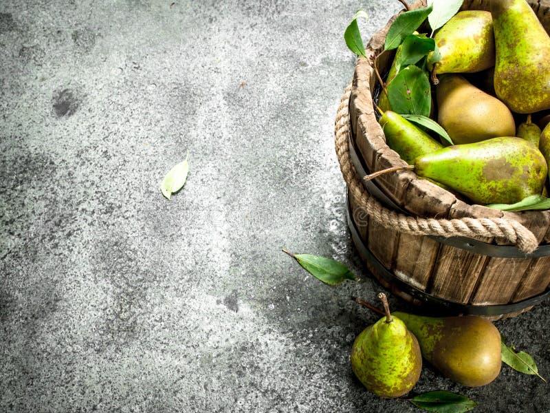 Peras maduras em uma cubeta de madeira fotos de stock
