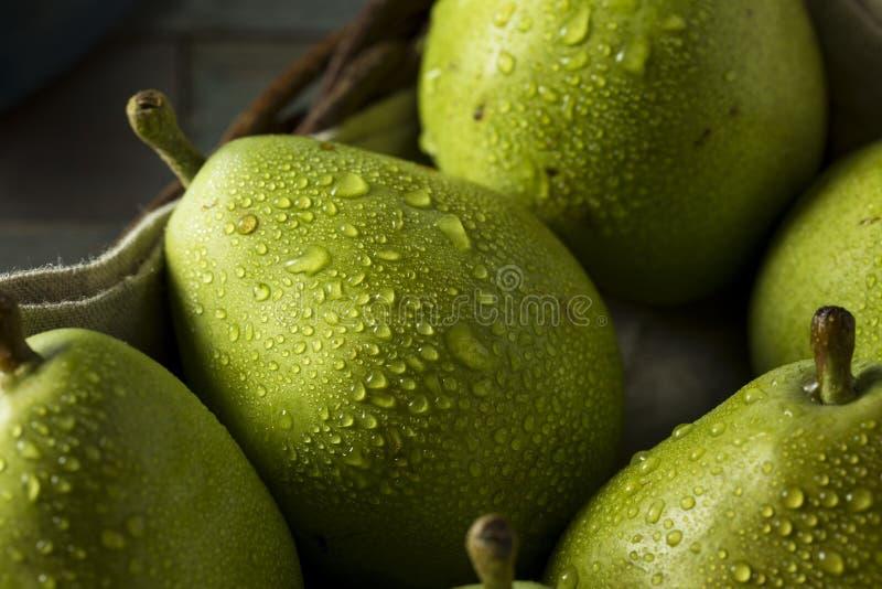 Peras orgânicas verdes cruas de Danjou imagens de stock royalty free