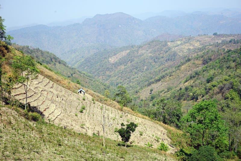 Percelen van land in de bergen royalty-vrije stock foto's