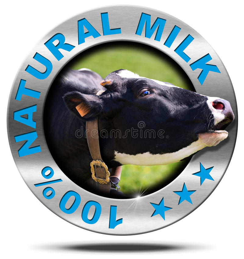 100 Percent Natural Milk- Metal Icon. Metallic round icon or symbol with head of cow and text 100 % natural milk. Isolated on white background royalty free illustration