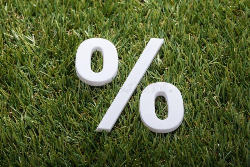 Percentageteken op Groen Gras stock afbeelding