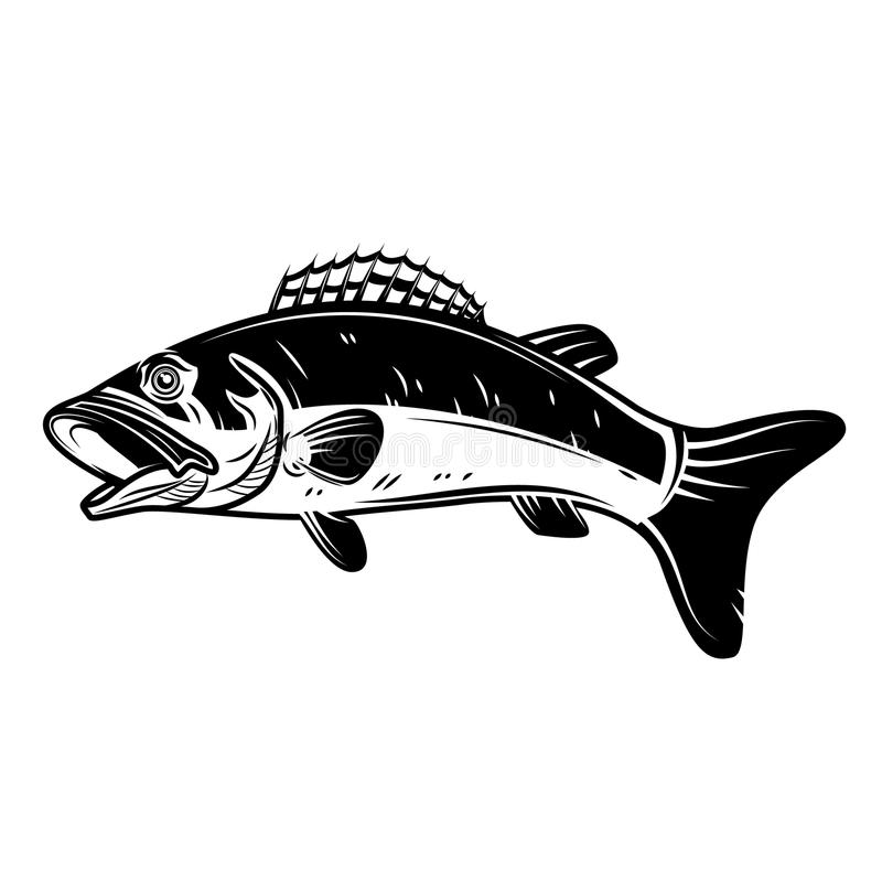 Free Perch Fish Icon Isolated On White Background. Design Element For Logo, Label, Emblem, Sign. Royalty Free Stock Photo - 106140685