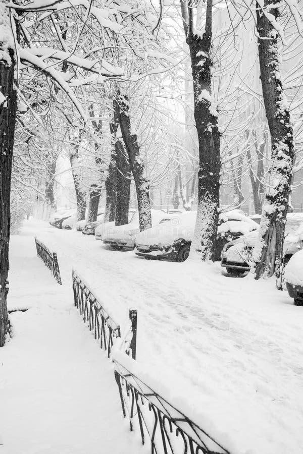 Percorso, alberi ed automobili urbani innevati Foto in bianco e nero di Pechino, Cina immagine stock