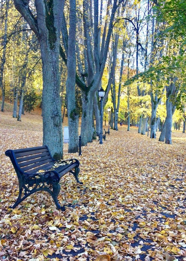 Percorso all'autunno fotografia stock libera da diritti