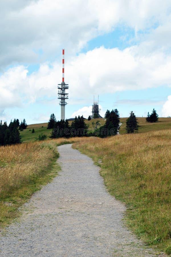 Percorso alla foresta nera superiora della montagna di Feldberg immagine stock