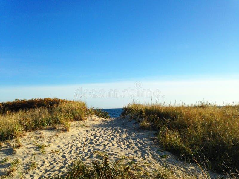 Percorso alla spiaggia immagine stock