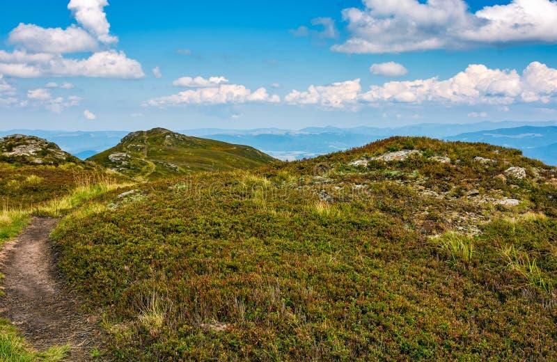 Percorso attraverso le colline erbose con le rocce fotografia stock