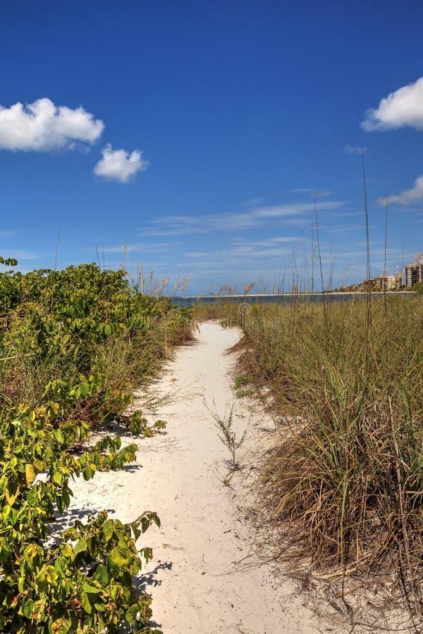 Percorso bianco della spiaggia di sabbia che conduce all'oceano alla spiaggia del parco di stato chiave degli amanti immagine stock