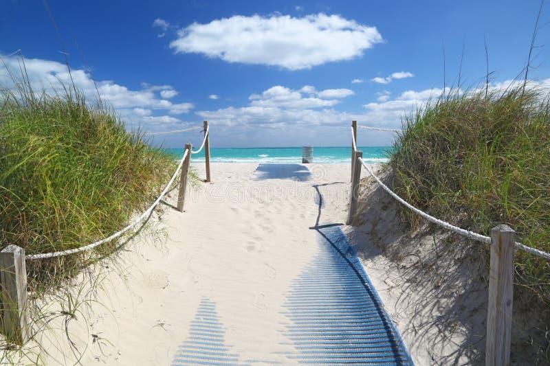 Percorso che va al mare in Miami Beach fotografia stock