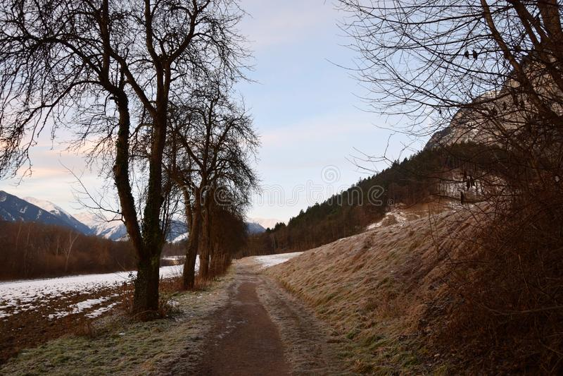 Percorso con gli alberi dal lato di una montagna innevata immagini stock