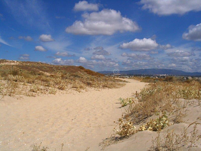 Percorso della duna immagine stock