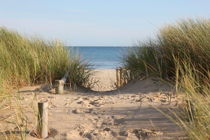 Percorso di accesso delle dune di sabbia della spiaggia immagini stock
