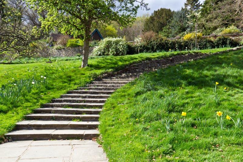 Percorso di camminata con le scale nel giardino verde immagine stock immagine di aperto - Scale in giardino ...