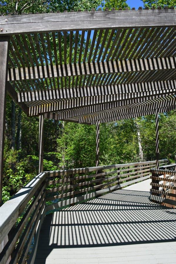 Percorso di camminata di legno nel parco naturale - immagine delle linee e delle ombre fotografia stock