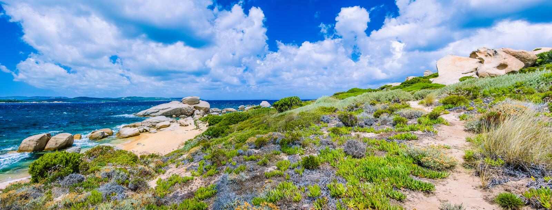 Percorso di camminata lungo la linea costiera rocksy dell'arenaria di Costa Serena, Sardegna, Italia fotografia stock libera da diritti