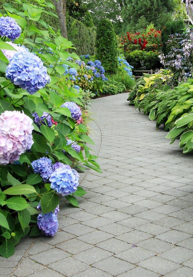 Percorso di fioritura del giardino immagine stock