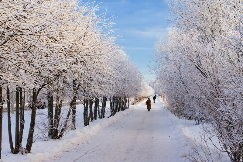 Percorso di inverno fotografie stock