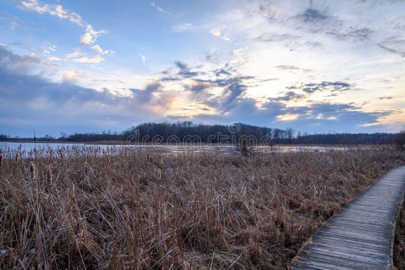 Percorso di legno lungo il lago in foresta al tramonto fotografia stock libera da diritti