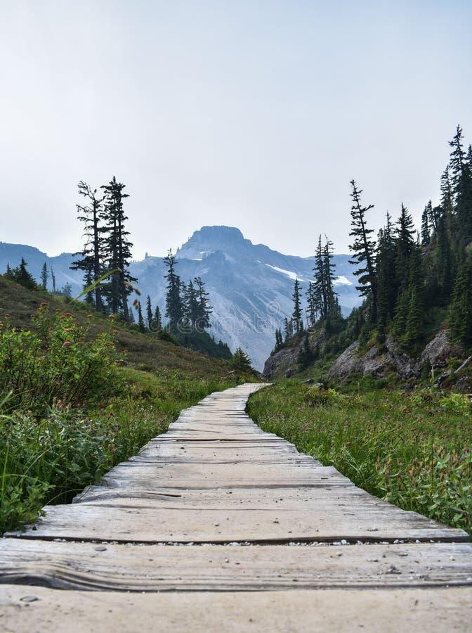 Percorso di legno nelle montagne immagini stock libere da diritti