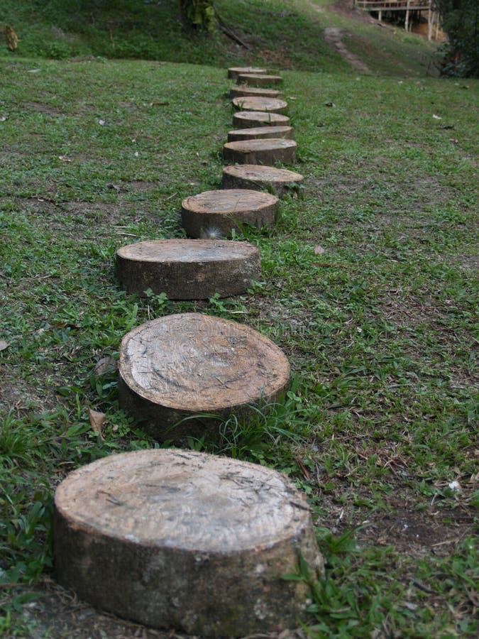 Percorso di legno in un ecolodge africano fotografie stock