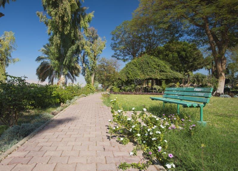 Percorso di pietra attraverso il giardino rurale ornamentale tropicale fotografia stock libera da diritti