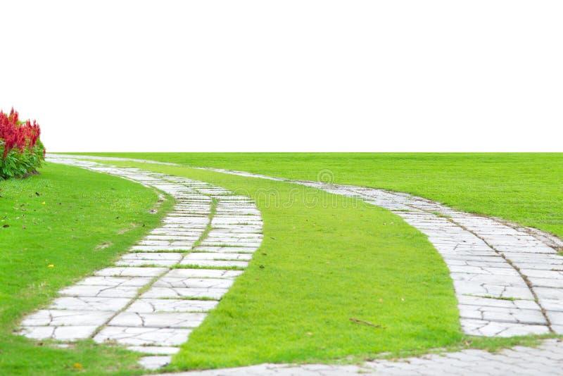 Percorso di pietra del giardino con erba che cresce fra le - Giardino con pietre ...