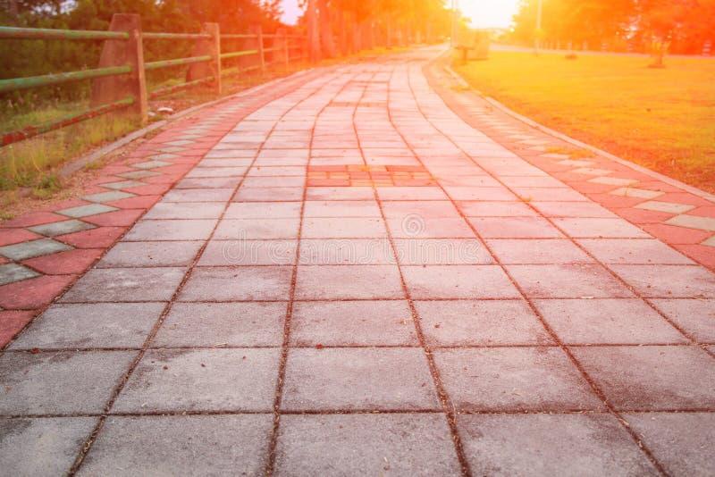 Percorso di pietra della passeggiata del blocco in parco pubblico con il tono della luce di tramonto: Selezioni il fuoco con prof fotografie stock libere da diritti