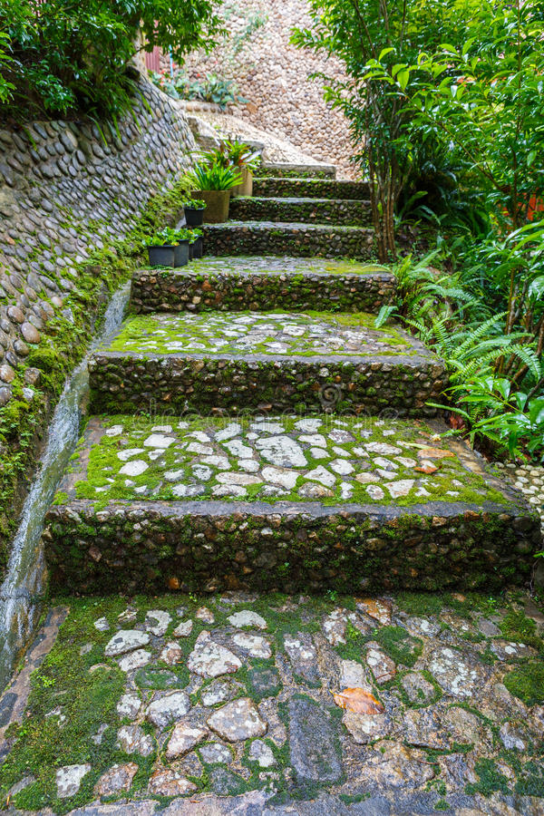 Percorso di pietra delle scale in giardino immagine stock immagine di roccia parco 44584891 - Scale in giardino ...