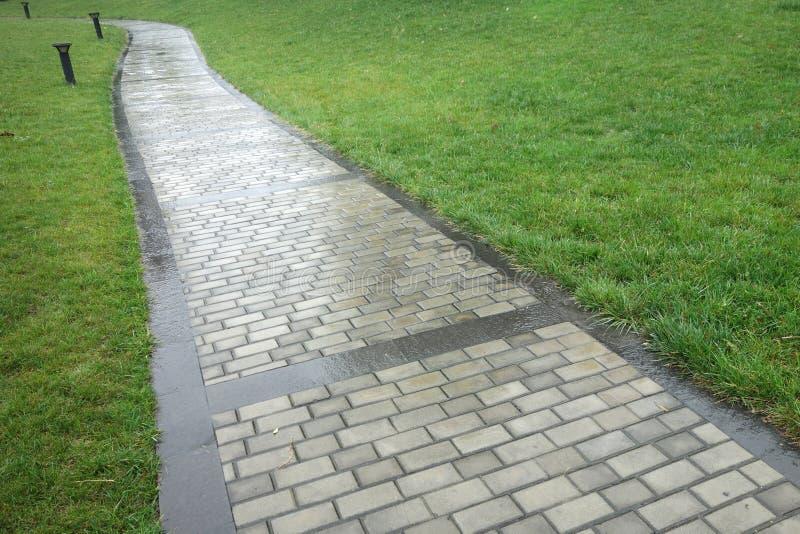 Percorso di pietra nella pioggia fotografia stock