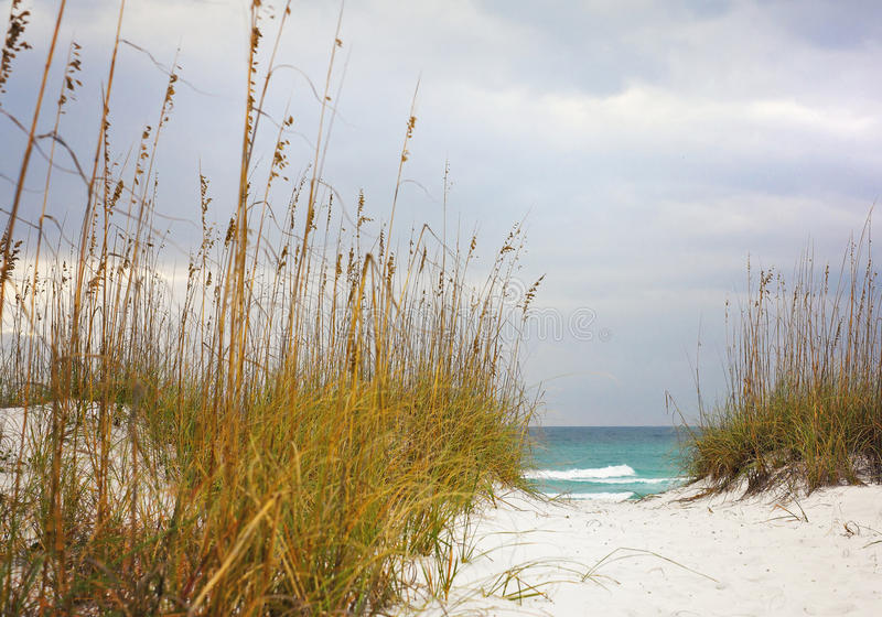 Percorso di Sandy alla bella spiaggia fotografia stock