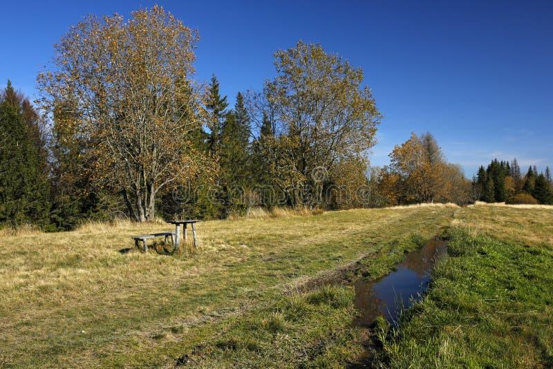 Percorso di trekking di autunno fotografia stock libera da diritti
