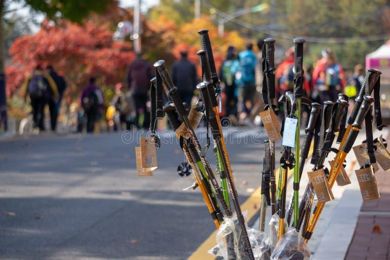 Percorso di vendita dei bastoni da passeggio a piedi intorno alla montagna di Daedunsan fotografia stock libera da diritti