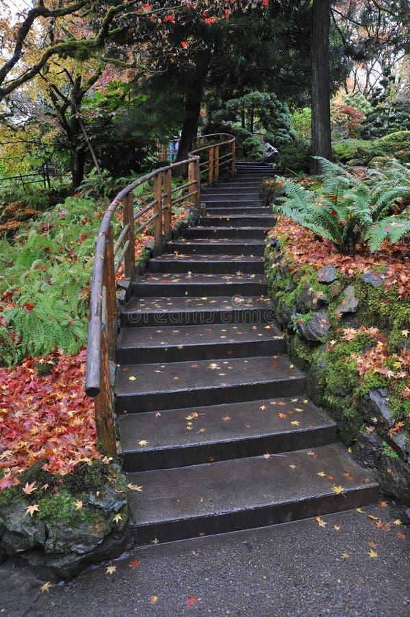 Download Percorso in giardino immagine stock. Immagine di landscaping - 7318759