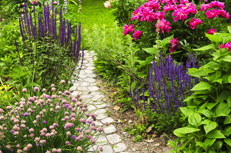 Percorso in giardino di fioritura immagini stock