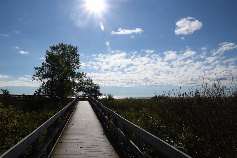 Percorso in luce solare fotografie stock libere da diritti
