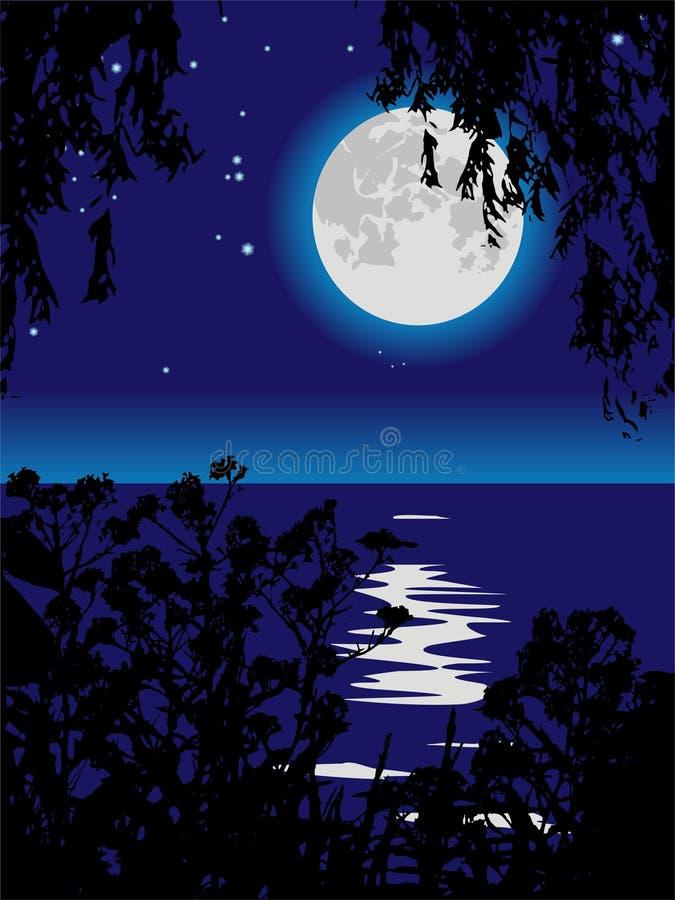 Percorso lunare sul lago alla notte. illustrazione vettoriale