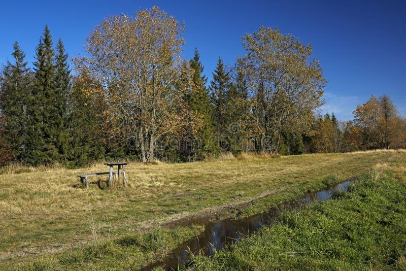 Percorso nel campo in montagne di Gorce, Polonia di autunno immagini stock