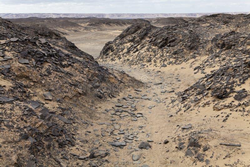 Percorso nel deserto fotografia stock