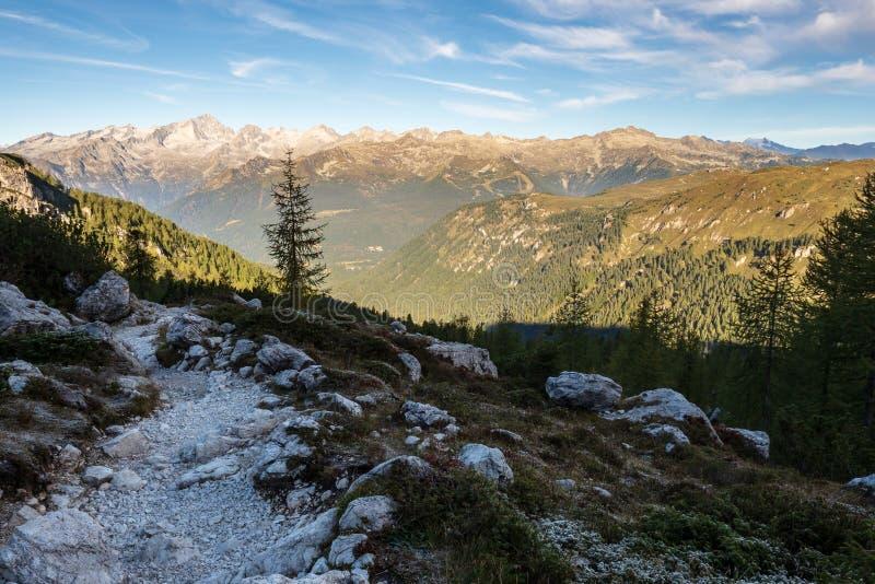Percorso turistico con il bello paesaggio nei precedenti, dolomia, Italia della dolomia fotografia stock libera da diritti