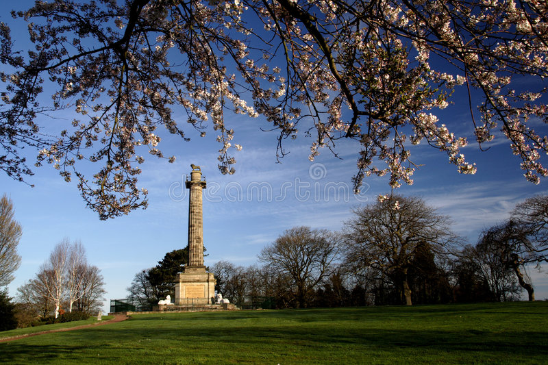 Download Percy Monument stock photo. Image of branches, grass, monument - 2213466