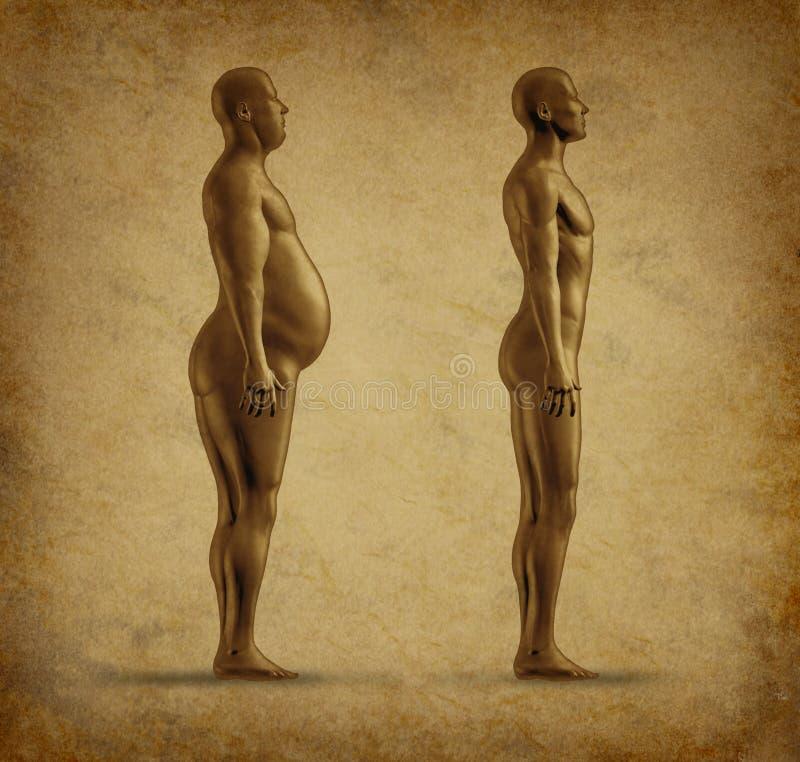 Perda de peso antes e depois ilustração royalty free